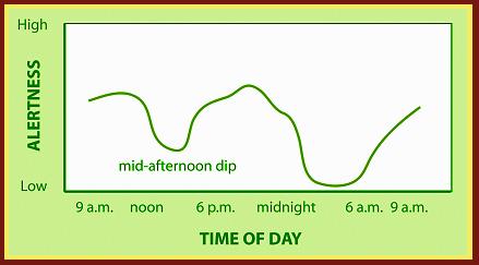 Circadian graph