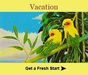 Healthy Vacations
