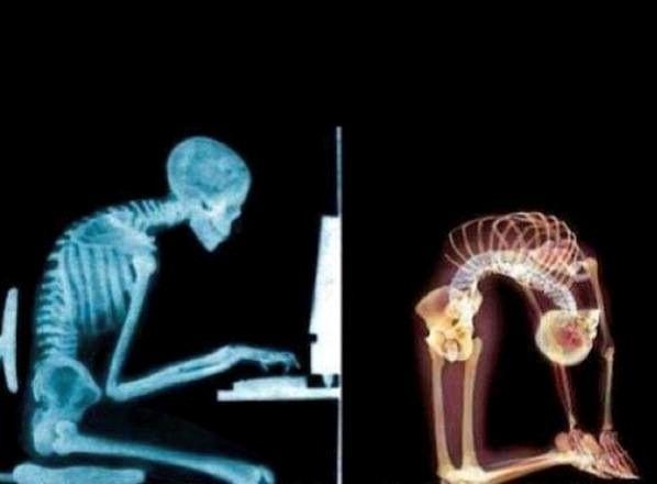 yoga antidote