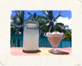 Kefir-coconut