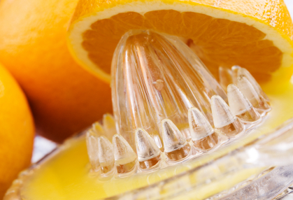 Reamer Citrus Juicer