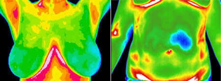 What Thermal Images Look Like. Image courtesy of Discovery Screening.